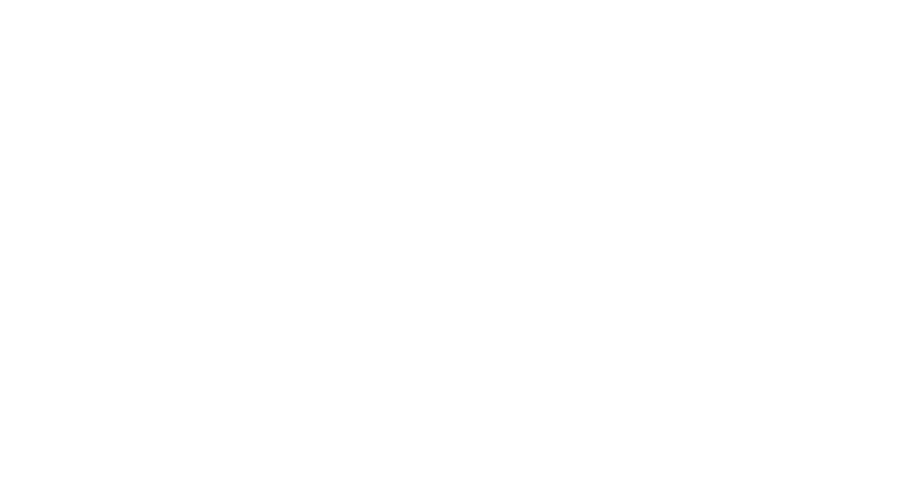 Flaunt Society